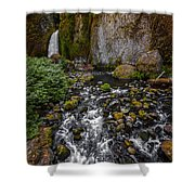 Waterfall Chillin'  Shower Curtain