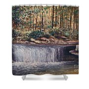 Waterfall Glory Shower Curtain