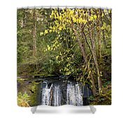 Waterfall In A Park, Whatcom Creek Shower Curtain