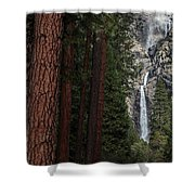 Waterfall Of Pines Shower Curtain