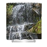 Waterfall On Mount Ranier Shower Curtain