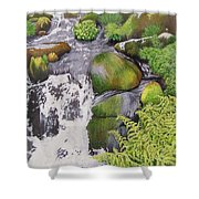 Waterfall On Skye Shower Curtain