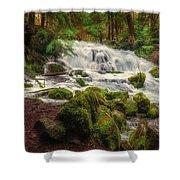 Waterfall Reverie Shower Curtain