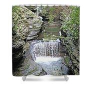 Waterfall Rocks Foliage Pond 2 9132017 Shower Curtain