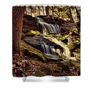 Waterfall Through The Trees Shower Curtain