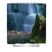 Waterfall02 Shower Curtain by Carlos Caetano