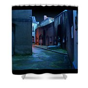 Waterford Alley Shower Curtain