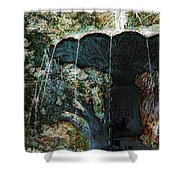 Waterfountain In Charleston Park Shower Curtain