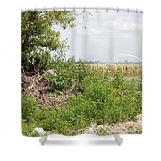 Watering The Weeds Shower Curtain