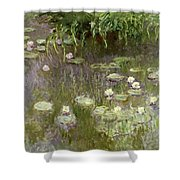 Waterlilies At Midday Shower Curtain