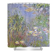 Waterlilies, Cluster Of Grass Shower Curtain