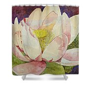 Waterlily Collage Shower Curtain