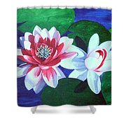 Waterlily Dance Shower Curtain