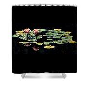 Waterlily Panorama Shower Curtain