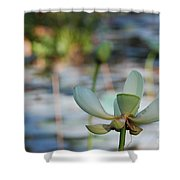 Waterlily Wash Horizontal Shower Curtain