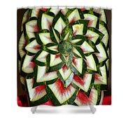 Watermelon Art Shower Curtain