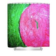 Watermelon Shower Curtain by Inessa Burlak
