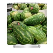 Watermelons Everywhere Shower Curtain