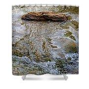 Watermovementstudy 1.1 Shower Curtain