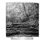 Waterscape In Bw Shower Curtain