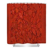 Watershed #2 Shower Curtain