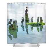 Watersky Birds Shower Curtain