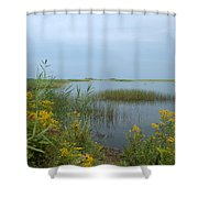 Watery Path Shower Curtain