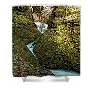 Watkins Glen Waterfall Shower Curtain