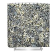 Wave Over Shells  Shower Curtain