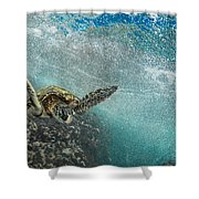 Wave Rider Turtle Shower Curtain