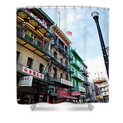Waverly Place Panorama Shower Curtain