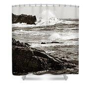 Waves Crashing Shower Curtain