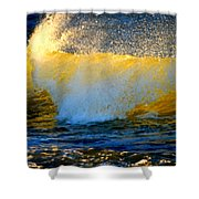 Waves Of Desire Shower Curtain