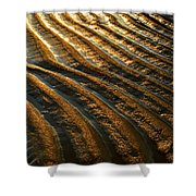 Waves Of Gold Shower Curtain