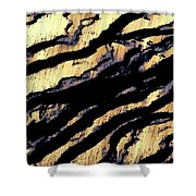 Waves Of Time 3 Shower Curtain