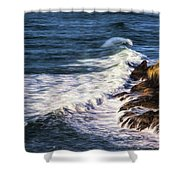 Waves Rocks And Birds Shower Curtain