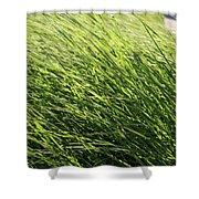 Waving Grass Shower Curtain