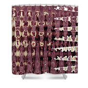 Wax Sine Shower Curtain