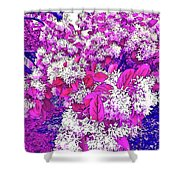 Waxleaf Privet Blooms On A Sunny Day With Magenta Hue Shower Curtain