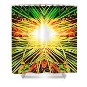 Way Back Home  Shower Curtain