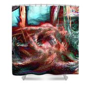 We All Dream Here Shower Curtain