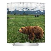 We Saw A Bear Shower Curtain