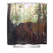 We Two Shower Curtain