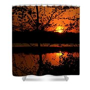 Wealth Of Nature Shower Curtain