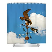 Weather Vane On Blue Sky Shower Curtain by D K Wall