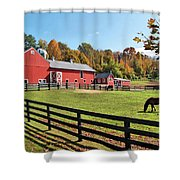 Weathercock Farm Shower Curtain