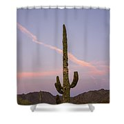 Weathered Cactus Shower Curtain