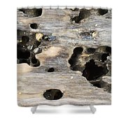 Weathered Driftwood Shower Curtain