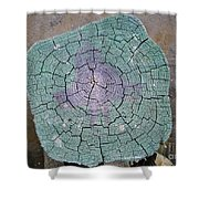 Weathered Pier Shower Curtain