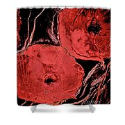 Weathered Poppies Shower Curtain